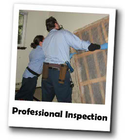 professionalinspection